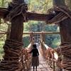 【ひとり旅】日本三大奇橋・祖谷のかずら橋を渡る。