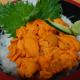 北海道の最北、稚内「うろこ亭」で食べる海鮮丼・ウニ丼・たこザンギ