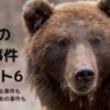 世界の熊害【熊の獣害事件100年鑑】見たらあなたは後悔する!