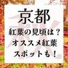 京都の紅葉の見頃っていつ?実際に行ってみたオススメ紅葉スポットも♩
