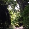 三浦半島縦走の旅➀ 森戸川ジャングルトレイル