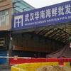 新型コロナウイルス、発生源は武漢海鮮市場でなかった可能性が濃厚