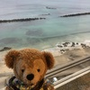 中国からの帰国者191名を受け入れた「勝浦ホテル三日月」!3/1に営業再開したので泊まってみた!!