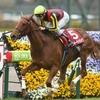 穴馬の台頭は?2019阪神牝馬ステークス(G2)レース傾向、有力馬分析