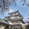 上総旅行二日目。菜の花と桜のいすみ鉄道、大多喜城と城下町