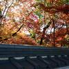 2012京都の紅葉(2)