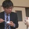 『人も猫も一緒に食べられる缶詰』を開発中!京丹後市峰山町では『こまねこまつり』も開催!!