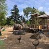 Schaumburgの公園