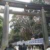 東京で初詣と言ったらここ、明治神宮へ行ってきた。