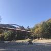 【無料キャンプ】埼玉県・飯能河原に行ってきた!