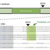 転写因子のヒストン自体への結合が細胞運命に重要?