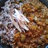 ゴーヤと牛・豚・鶏挽肉のキーマカレー