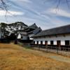 【福岡旅行】福岡城跡観光!晴天の下、綺麗な花や城跡に残る建築物を楽しむ!