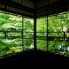 瑠璃光院~新緑が美しい春の特別拝観に行ってきたよ!インスタ映えするよ(笑)