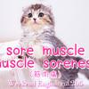 【週末英語#205】英語で『筋肉痛』は「muscle pain」よりも「sore」を使う方が自然