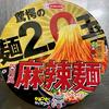 驚愕の麺2.0玉 四川風麻辣麺(エースコック)