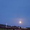 蠍座満月のエネルギー