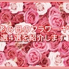 敬老の日にあげたいフラワーギフト4選!2017年の敬老の日はどのプレゼントにする?!