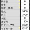 2020年7月の家計簿
