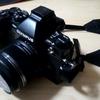 【写真】私のカメラ~オリンパスに出会えて良かった~
