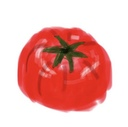 水耕栽培奮闘記~おいしいトマトが出来るまで~