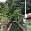相模川右岸用水を歩く その1