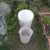 【出来事】雨水タンク(バケツ)を設置しました
