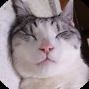 うさ子の育児&猫日記