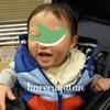 1歳5か月で話せるようなった言葉【息子の成長記録】