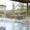 新幹線・マラソンにやられて春江でユリを見た話