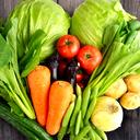 ダイエットしないで痩せる方法は腸内細菌のヤセ菌と酵素断食が効果的