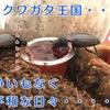 【クワガタ幼虫】前蛹から蛹になるまでの変化を解説!