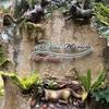 バリ新婚旅行記⑥【3日目(2)】スリリングな空中ブランコ!とウブド中心街散策と水上でバリごはん。