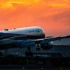 飛行機撮影の聖地、千里川土手へ。