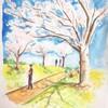 桜の樹 風の中で