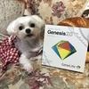 Genesis2.0で遺伝子検査してみよう!〜やり方は唾液を採取するだけ編〜