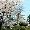 5月2日/樋口楓と季節
