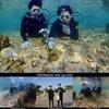 オキナワの海で潜ったよ!