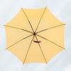 雨の日が待ち遠しくなる!センスを感じるお洒落な雨傘集めました