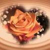 ✨今日のサクッと占い✨ほんとうの星空で星占い✨天使もご一緒に✨5/8