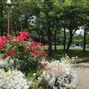 花と果実の憩いの広場 -築地川公園-