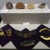 発掘された日本列島2016 戦国・江戸時代編 @江戸東京博物館