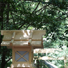 緑を愉しむ。#神宮 おすすめ:☆☆☆☆ ~写真で届ける伊勢志摩観光~