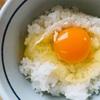 食堂かめっち。美咲町はたまごかけごはん生誕の地!500円食べ放題のTKGにめっちゃ満足。