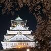 大阪城公園で夜桜を楽しみました