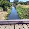 平塚から渋田川を歩く