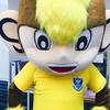 株式会社 栃木サッカークラブ様から感謝状を頂きました!