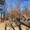 新年の公園巡り(伊佐沼、智光山)