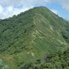 白砂山の花々1 2006.8.23-25