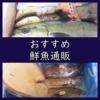 鮮魚通販のお試し購入・おすすめ詰合せセット5選とその楽しみ方